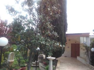 Foto - Villa viale John Fitzgerald Kennedy, Quasano, Toritto