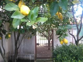 Foto - Appartamento via Tappia-Furignano, Saviano