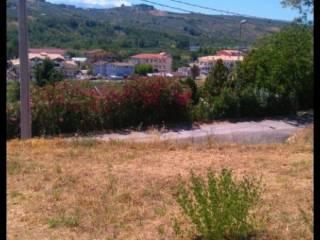 Foto - Terreno edificabile residenziale a Collecorvino