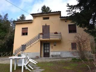 Foto - Rustico / Casale Strada Provinciale Francigena, Mutigliano-Torre, Lucca