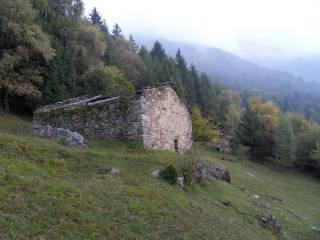 Foto - Rustico / Casale Strada Provinciale del Tonale e della Mendola, Cedegolo