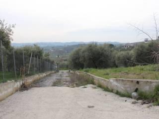 Foto - Villa Strada di Colle Fagiano, Cretone, Palombara Sabina