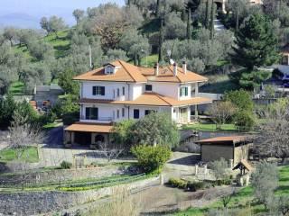 Foto - Villa viale Cassiodoro, Squillace