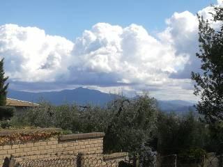 Foto - Terreno edificabile residenziale a Riano