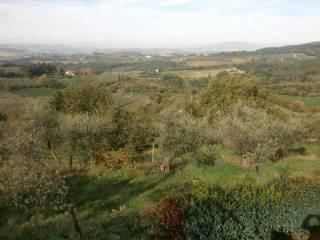 Foto - Terreno agricolo in Vendita a Scandicci