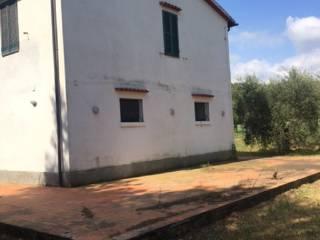 Foto - Rustico / Casale Strada Valmarina, Capalbio