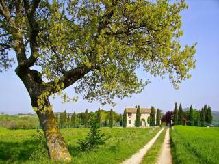 Foto - Rustico / Casale Strada Provinciale di Collazzone Tratto 4, Viepri, Massa Martana
