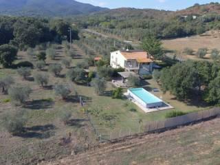 Foto - Rustico / Casale 130 mq, Ampio, Castiglione della Pescaia