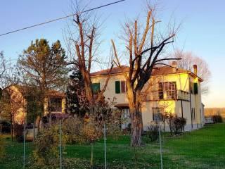 Foto - Rustico / Casale via Casoni, Casoni, Budrio