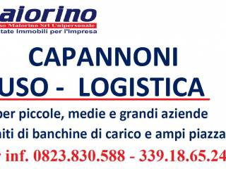 Immobile Affitto Marcianise
