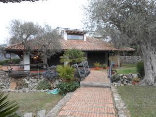 Foto - Villa via degli Oleandri, Ansedonia, Orbetello