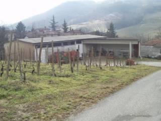 Immobile Vendita Borgo Priolo