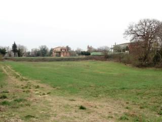 Foto - Terreno agricolo in Vendita a Graffignano