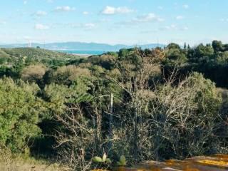 Foto - Terreno agricolo in Vendita a San Vincenzo