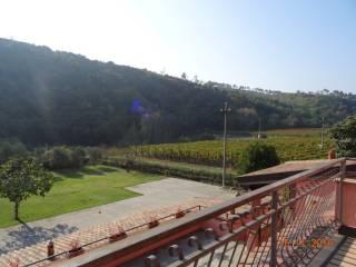 Foto - Villa regione Marixe, Albenga
