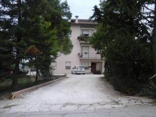 Foto - Rustico / Casale Contrada Morla, Pollenza