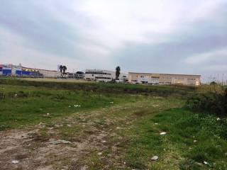 Foto - Terreno agricolo in Affitto a Anzio