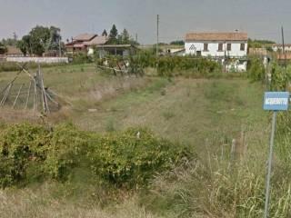 Foto - Rustico / Casale Località Salvadega, Pettorazza Grimani
