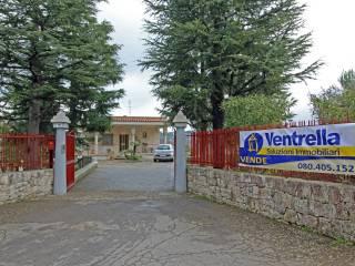 Foto - Villa, ottimo stato, 140 mq, Putignano