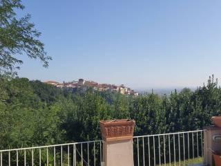 Case Toscane Agenzia Immobiliare : Case toscane immobiliare sas di parentini letizia e c agenzia