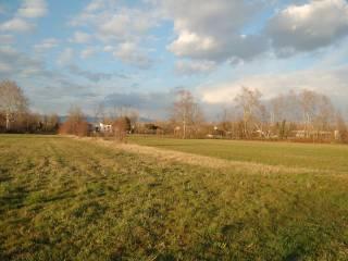 Foto - Terreno agricolo in Vendita a Carmignano di Brenta