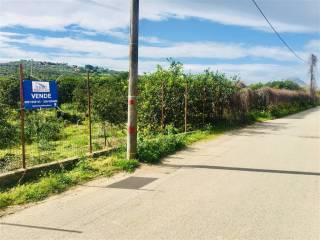 Foto - Terreno agricolo in Vendita a Campofelice di Roccella