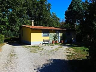 Foto - Villa via San Paolo, Castel Sant'Elia
