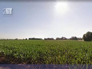 Foto - Terreno agricolo in Vendita a Vigasio