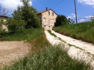 Foto - Rustico / Casale, da ristrutturare, 400 mq, Servigliano