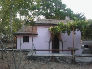 Foto - Rustico / Casale Strada Provinciale Santa Severa, Tolfa