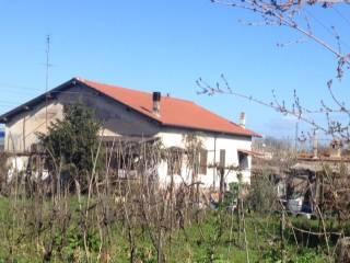 Foto - Casa indipendente 158 mq, da ristrutturare, Montelibretti