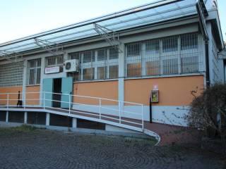 Immobile Affitto Cologno Monzese