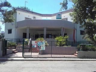 Foto - Casa indipendente 386 mq, buono stato, Ruvo di Puglia