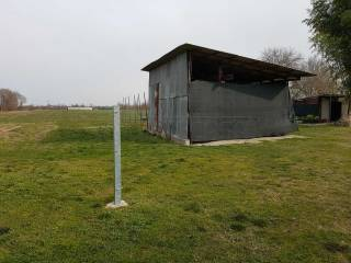 Foto - Rustico / Casale, da ristrutturare, 140 mq, Mirano