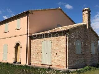 Foto - Rustico / Casale via Montalfoglio, San Lorenzo in Campo