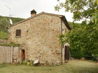 Foto - Rustico / Casale Località Sant'Andrea a Pigli, Puliciano, Arezzo