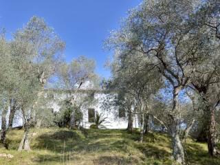 Foto - Rustico / Casale via Balza Fiorita, Camaiore
