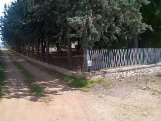 Foto - Villa via San Magno, Corato