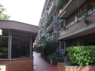Foto - Quadrilocale via Angiolo Cabrini, Nuovo Salario, Roma