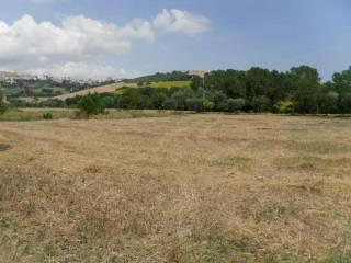 Foto - Terreno edificabile industriale a Montegranaro