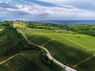 Foto - Terreno agricolo in Vendita a Monforte d'Alba