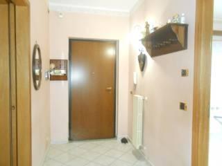 Foto - Appartamento Galleria, Montemiletto