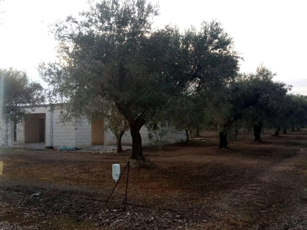foto  Villa bifamiliare, nuova, 15000 mq, Melendugno