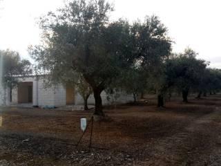 Foto - Villa, nuova, 15000 mq, Melendugno