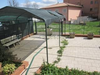 Foto - Quadrilocale via Gaeta, Ceccano