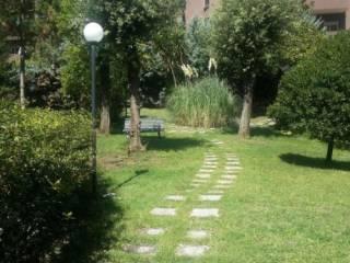 Foto - Trilocale via della Mendola, Cortina d'Ampezzo, Roma