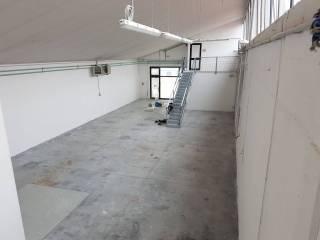 Immobile Affitto Breda di Piave