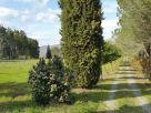 Villa Vendita Canale Monterano