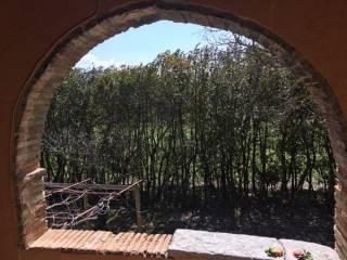 Foto - Rustico / Casale Strada Provinciale della Montagna di Cetona, San Casciano dei Bagni