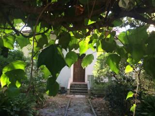 Foto - Villa viale Paisiello, Alba, Riccione